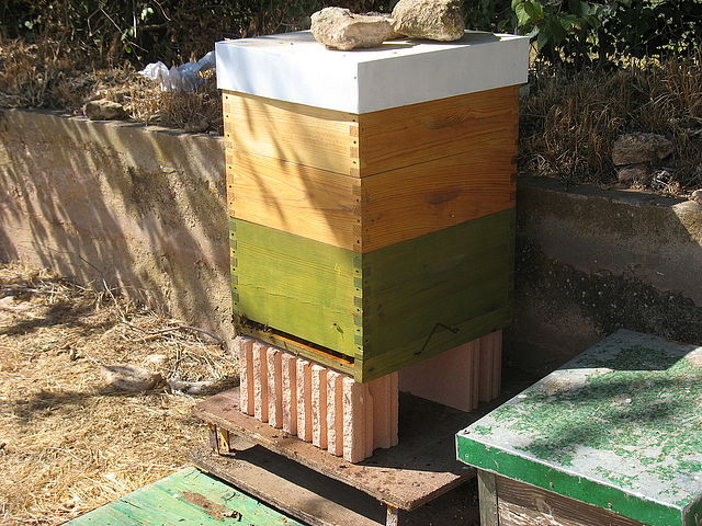 Cómo pintar las colmenas ecológicas